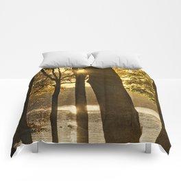 """""""Second"""" Summer Comforters"""