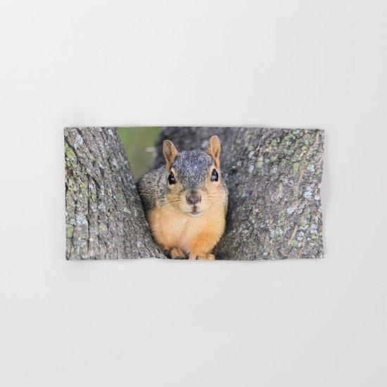 Sqire Squirrel  Hand & Bath Towel