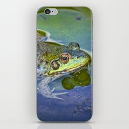 Frog resting on a Lily Pad iPhone Skin