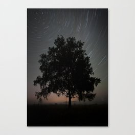 Carousel of stars Canvas Print