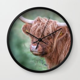 Scottish cow close up Wall Clock