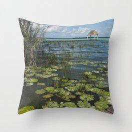 Lagoon, Bacalar Throw Pillow