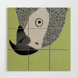 African Grey Parrot [ON MOSS GREEN] Wood Wall Art