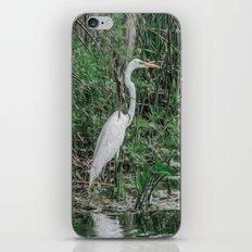 Just Wading Around iPhone & iPod Skin
