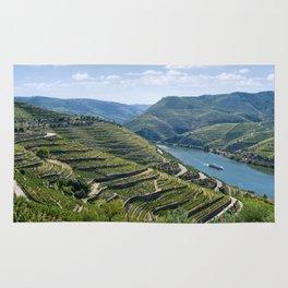 Portugal, the Douro valley near Peso da Regua Rug