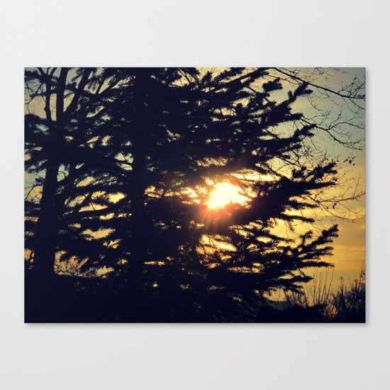 January Blues Canvas Print