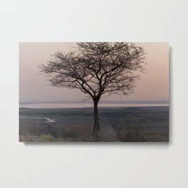 A Lone Tree at Lake Natron Metal Print