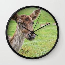 Oh, deer. Wall Clock