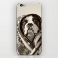 Obi Wan (Buck the world's most lovable boxer dog) iPhone & iPod Skin