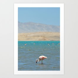 Paracas, Peru II Art Print