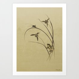 Orchid Sonata Art Print