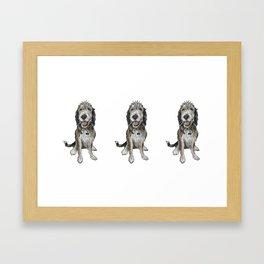 Berne Baby 2 Framed Art Print