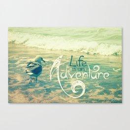 California Beach Seagull Canvas Print