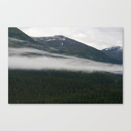 Whispy, part II Canvas Print