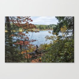 Splashes of Color Around Clear Lake Canvas Print