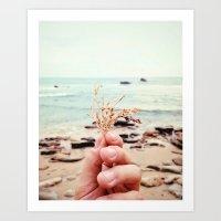 Ocean Stuff Art Print
