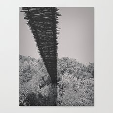 Monkey Sanctuary - Underside of bridge Canvas Print