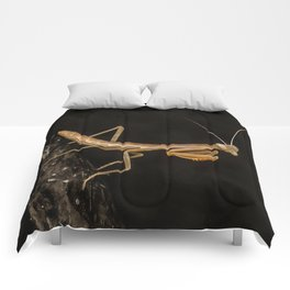 Praying Mantis Isolated on Black Comforters