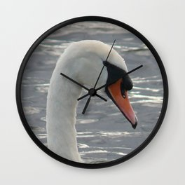MUTE SWAN ON LOUGH ERNE Wall Clock