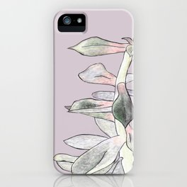 A Succulent With Crayons iPhone Case