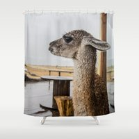 lama Shower Curtains featuring Lama by miloezger