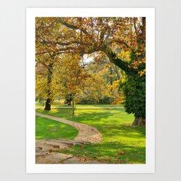Garden at fall Art Print