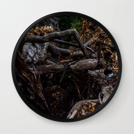 Colored Nature Wall Clock