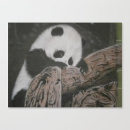 Xiao Liu Canvas Print