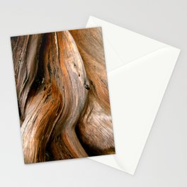 Tree wood grain Stationery Cards
