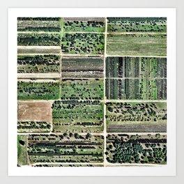 Field 1 Art Print