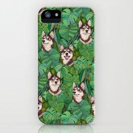 Pomsky Garden iPhone Case