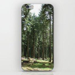 Dartmoor woods iPhone Skin
