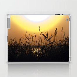 Seagrass - Summersunset - Isle Ruegen Laptop & iPad Skin
