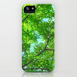 Canopy of Green, Leafy Branches with Blue Sky iPhone Case