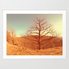 Tree I Art Print