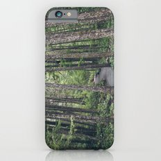 A walk through the trees iPhone 6s Slim Case