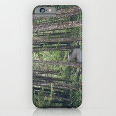 A walk through the trees Slim Case iPhone 6s