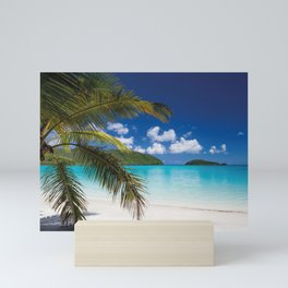 Tropical Shore Mini Art Print