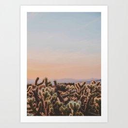 desert sunset v / joshua tree, california Art Print