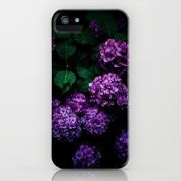 Hydrangea 01 iPhone Case