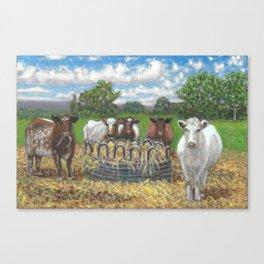 5 Cows Canvas Print