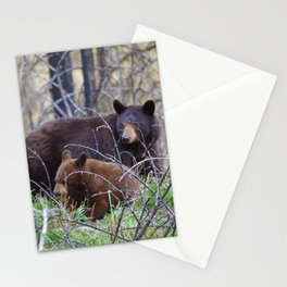 Sow & cub in Jasper National Park   Canada Stationery Cards