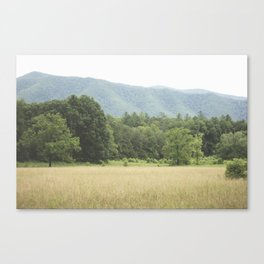 Cades Cove in the Smokey Mountains Canvas Print