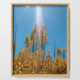 Sunlight Beam // Backpacking Hike through the Aspen Trees in Autumn Serving Tray