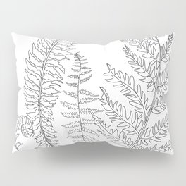 Minimal Line Art Fern Leaves Pillow Sham