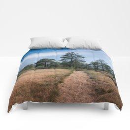 Zimmerman Park Comforters