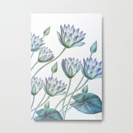 Water Lily Blue Metal Print