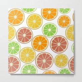 Citrus Fruit Slices, Oranges, Limes, Lemons, Grapefruit Metal Print