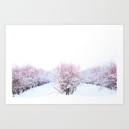 Field in the Snow2 Art Print