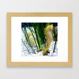Do You Sea? Framed Art Print